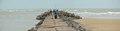 Breakwater - Digha Mohana Beach - East Midnapore 2015-05-02 9368-9370.TIF