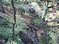 Bridge over stream - geograph.org.uk - 1552705.jpg
