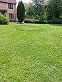 British Isles Fairy Circles Long Shot.jpg