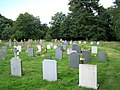 Brockdish Churchyard - geograph.org.uk - 913289.jpg