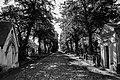 Brompton Cemetery - 2.jpg