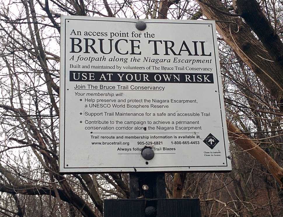 Bruce Trial Access Point
