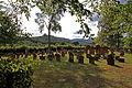 Busenberg-Judenfriedhof-32-Drachenfels-gje.jpg