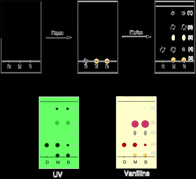 File ccm exemple wikimedia commons - Chromatographie sur couche mince ...
