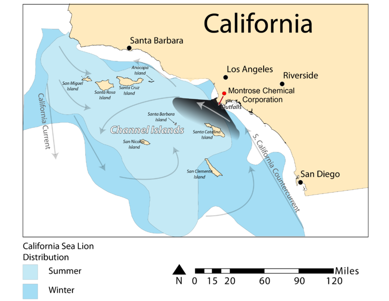 File:California Sea Lion Distribution.png - Wikimedia Commons
