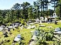 Calvary Hill Cemetery Sagada (40328467494).jpg