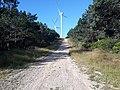 Camino Primitivo, Monte da Curiscada 04.jpg