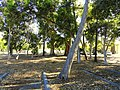 Campus parking lot - Naval Postgraduate School - DSC06818.JPG