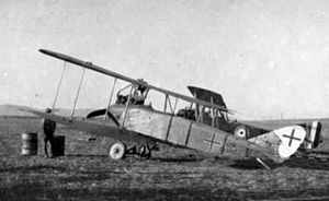 Captured German DFW C.V at Afule 1918.jpg