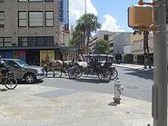 Carriage rides in downtown San Antonio, TX IMG 5336
