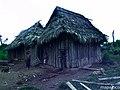 Casa típica campesina, en la Área Protegida Cerro Banacruz. - panoramio.jpg