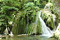 Cascade Ruisseau Balme Corveissiat 7.jpg