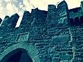 Castello di fenis aosta.jpg