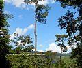 Catarata Bayoz - panoramio (3).jpg