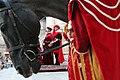Cavallo Cerimoniale.jpg