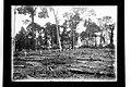 Cemitério da Candelária, Localizado Atrás do Hospital - 284, Acervo do Museu Paulista da USP.jpg
