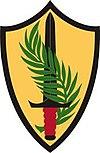 Central Command insignia.jpg