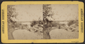 Central Park, from Robert N. Dennis collection of stereoscopic views 9.png