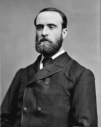 The Irish Parliamentary Party was formed in 1882 by Charles Stewart Parnell (1846-1891). Charles Stewart Parnell - Brady-Handy.jpg