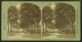 Charles Street Mall, Boston Common, from Robert N. Dennis collection of stereoscopic views.png