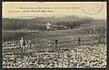 Chatillon-en-Diois (Drôme). - Plateau du Mont Glandaz (33605680794).jpg