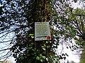 Chemin des 7 bornes, Brusvily (Côtes d'Armor) DSC09439.jpg
