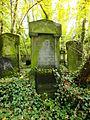 Chenstochov ------- Jewish Cemetery of Czestochowa ------- 35.JPG