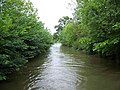 Chesterfield Canal, Wiseton - geograph.org.uk - 451036.jpg