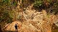 Chiang Mai, 2016 april - panoramio - Roma Neus (170).jpg