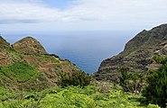 Chinamada - Tenerife 01.jpg