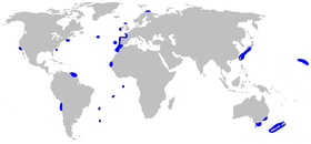 World map with blue shading in scattered spots around and in the middle of the Atlantic, and at isolated spots in the Pacific from Japan to Australia to California