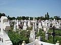 Cimitirul Viisoara - panoramio.jpg