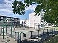 City stade de Marne-Yeuse.jpg