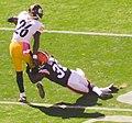 Cleveland Browns vs. Pittsburgh Steelers (15344335397).jpg