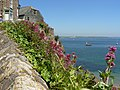 Cliff top cottages at Cawsand looking across Plymouth Sound - geograph.org.uk - 845323.jpg