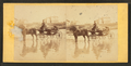 Coach on beach, and houses in the distance, from Robert N. Dennis collection of stereoscopic views 4.png