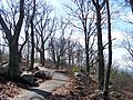 Cobb County, GA, USA - panoramio - Idawriter (20).jpg