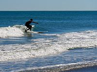 Cocoa Beach at Lori Wilson Park - Flickr - Rusty Clark (123).jpg