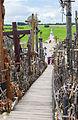 Colina de las Cruces, Lituania, 2012-08-09, DD 19.JPG
