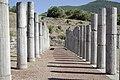 Columns in Ancient Messene (1).jpg