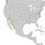 Condalia globosa range map 1.png