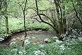 Conroy forêt domaniale de Moyeuvre.JPG
