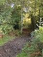 Corker's Lane bridleway, in Checkendon, Oxfordshire 2.jpg