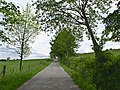 Country road - geograph.org.uk - 180505.jpg