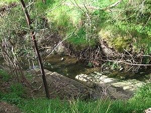 Templestowe, Victoria - Scoured banks of a creek in Templestowe