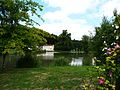 Crempsoulie étang Moulin blanc Bourgnac (1).JPG