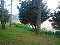 Cristo em Poços de Caldas - MG, Brasil - panoramio (3).jpg