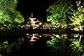 Daikaku-ji, Shingyohoto (Pagoda) -1 (November 2013) - panoramio.jpg