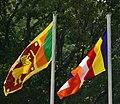 Daladamaliga flages.jpg