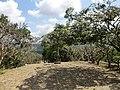 Dambulla, Sri Lanka - panoramio (101).jpg